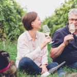 Weingut Hauck – Familiär und innovativ