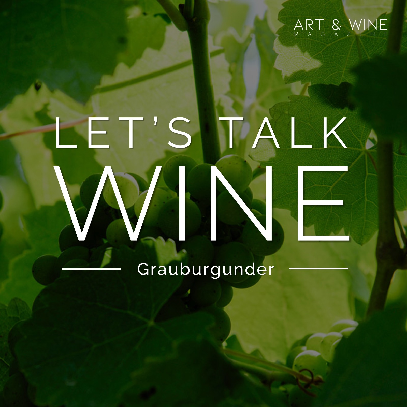 Let's talk WINE - Grauburgunder