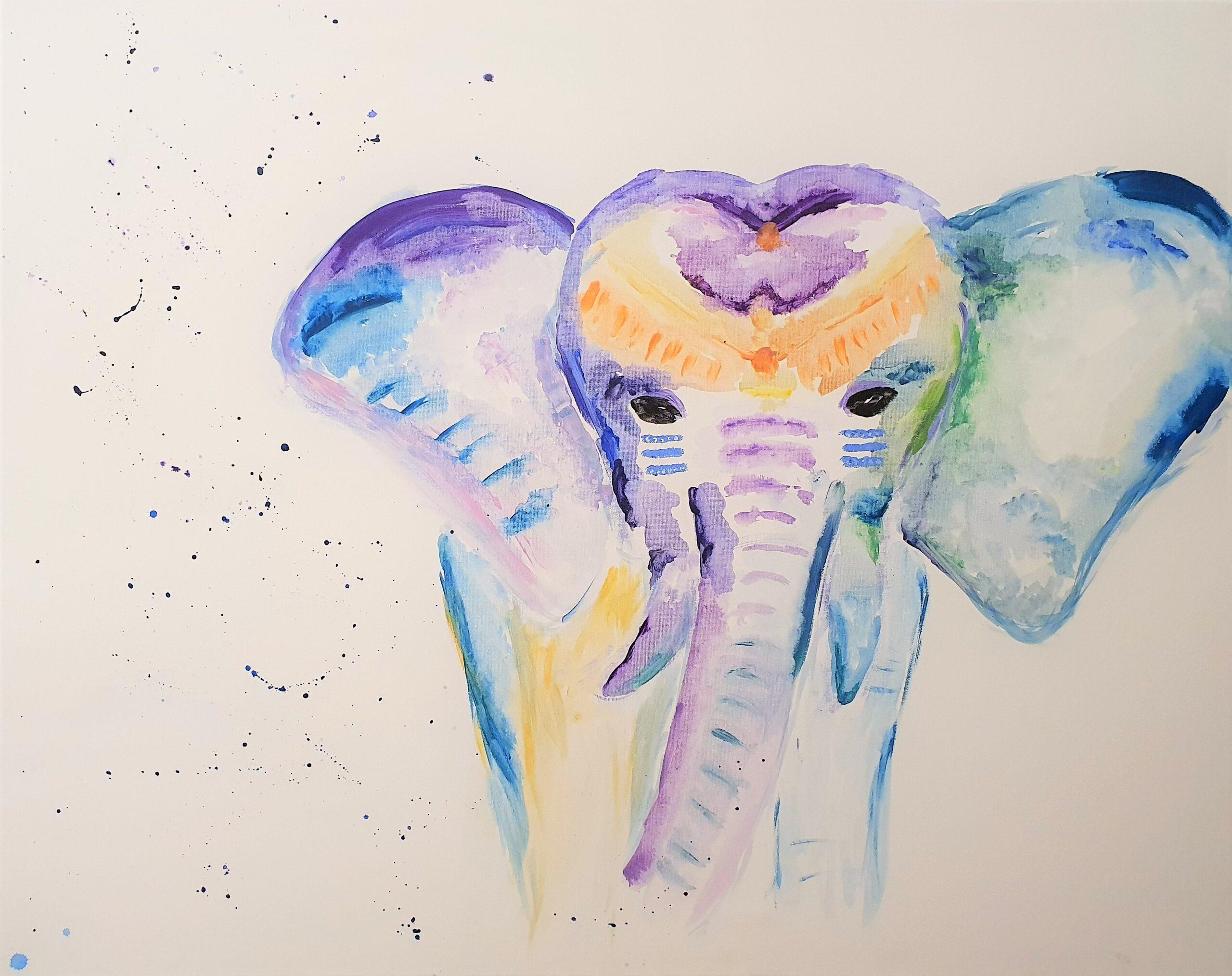 Elefant 2020