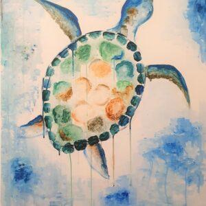 Turtle Francesca Quebbemann