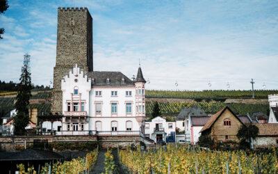 Alkoholfreier Wein – Pioniergeist von Carl Jung