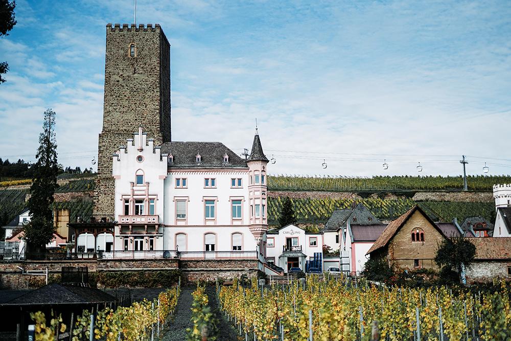 Weingut Carl Jung Schloss Boosenburg